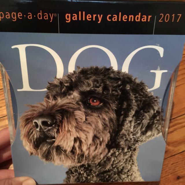 2017 Dog Desk Calendar
