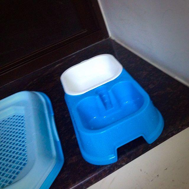 寵物 用餐容器