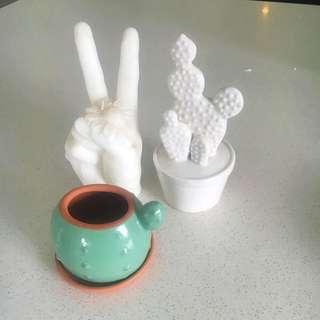 Cactus Pottery Planter