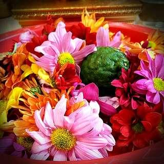 Flower Bathing (冲花水)
