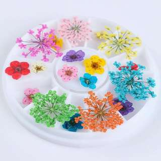 1 Box Mixed Dried Flower 3D Nail Art Decoration DIY Preserved Flower Manicure Nail Art Decoration