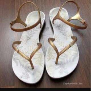 LOOKING FOR: ipanema Sandals