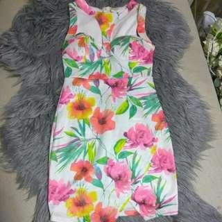 Women's Size 6 XS Dress