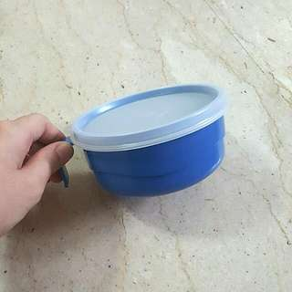 Tupperware Baby Porridge Container.