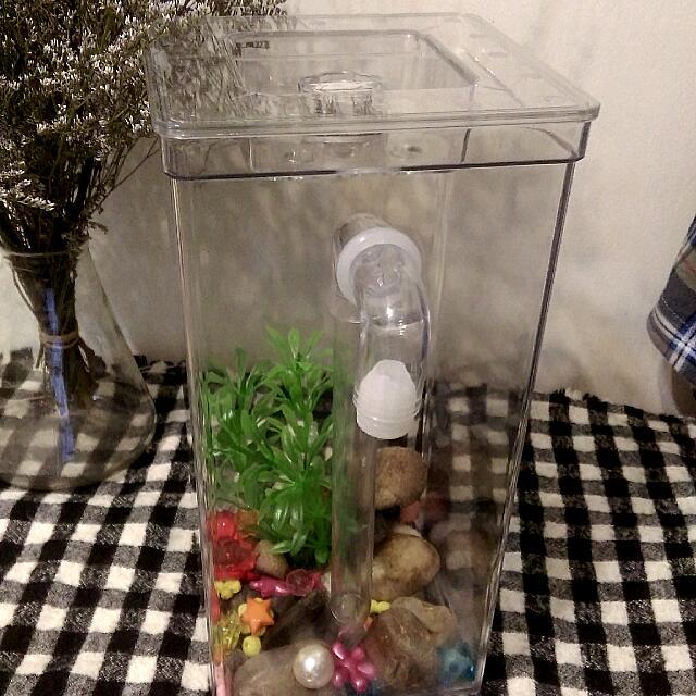 辦公室小水族箱  可加水自動換水 有LED燈#二手