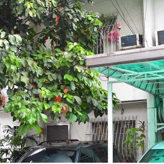 Townhouse with 2 bedroom and 1 car garage in Villa Ortigas 1 Quezon City near Xavier School and Greenhills