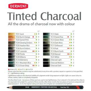 Derwent Tinted Charcoal Pencil