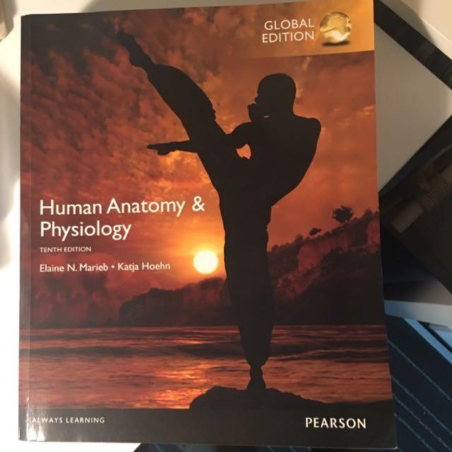 Human Anatomy And Physiology Elaine N.Marieb 10th Edition NUR1117 ...