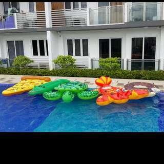 Pool Party - Float Rental