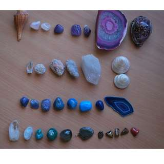 Assortment of gemstones and shells