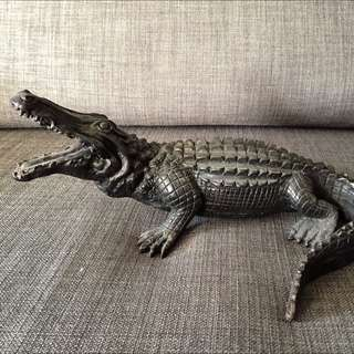 Display  Crocodiles
