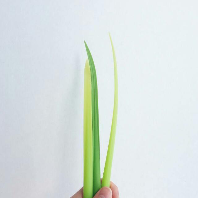 Pooleaf Pens (Spring Onion Pen)