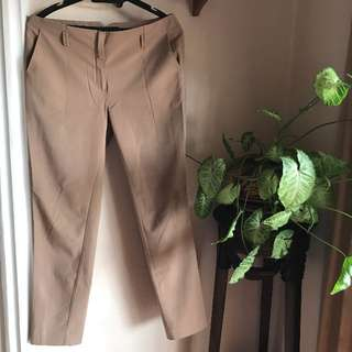Mango Brown Formal Pants