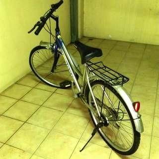 變速腳踏車(大)