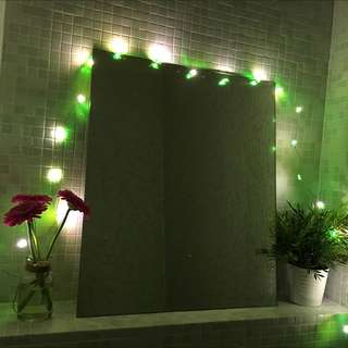 仙人掌 HOME 夜光吊燈 裝飾燈 LED light 荷蘭代購