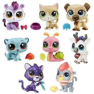 Hasbro Littlest Petshop Collections