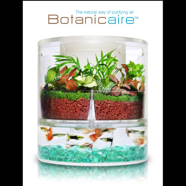 Glass/ Container of Botanicaire Air Detoxifier