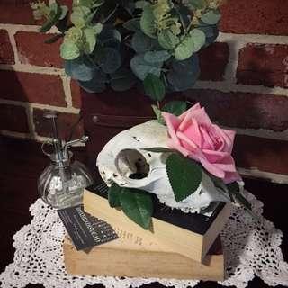BOXHEADISDEAD ewe Skull Ornament Handmade
