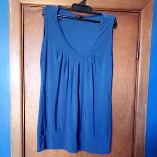 Blue pagini dress