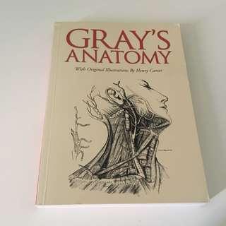 Anatomy Textbook