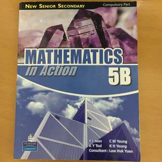 NSS Mathematics In Action 5B