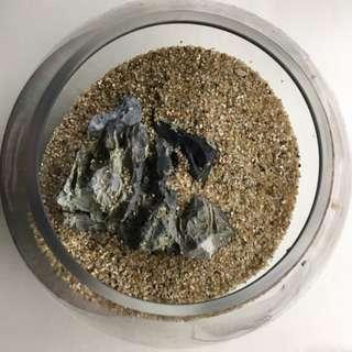 魚缸(含內容物)