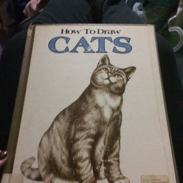 Drawing Cats Book