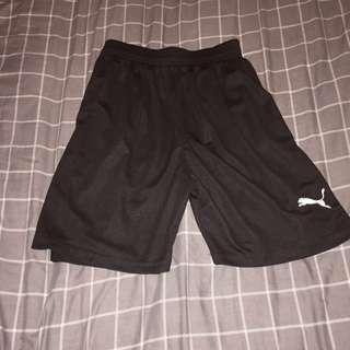 Puma Shorts (NEW)