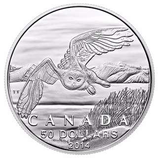 $50 Fine Silver Coin - Snowy Owl (2014)