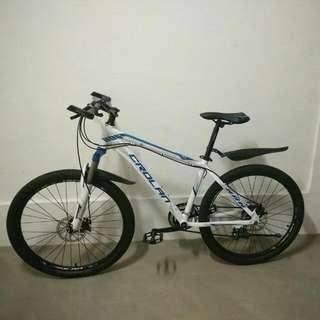 Light Weight Mountain Bike