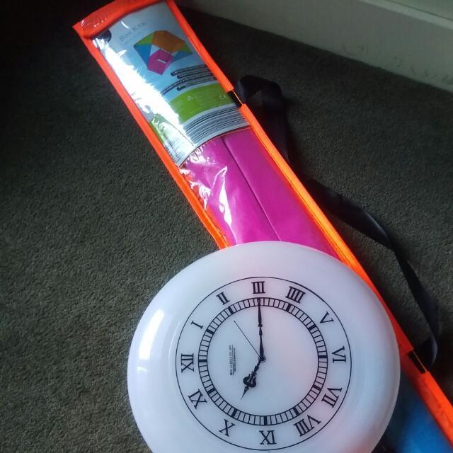 Fun In The Sun!  Box Kite and Frisbee combo
