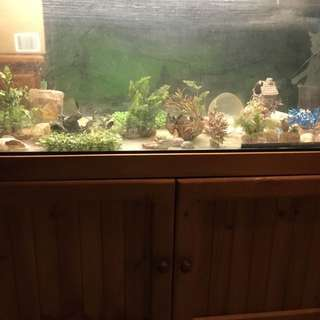 FISH TANK STAND AND ACCESSORIES