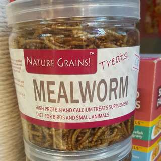 Nature Grains, Treats! DRY MEALWORM Made From Singapore. High protein and calcium treats supplement diet for birds and small animals.