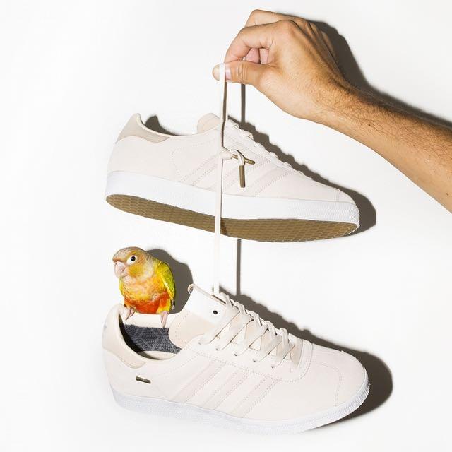 adidas Gazelle 芝加哥潮店聯名款