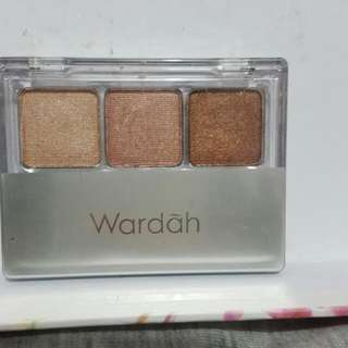 Wardah EyeXpert Eyeshadow