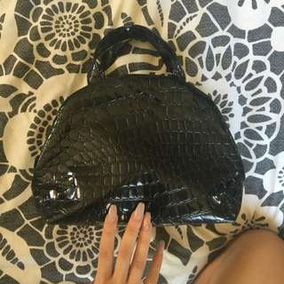 Makeup Bag, Snake Skin Look.