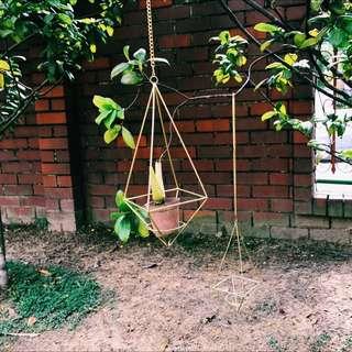 <PO> BN Geometric hanging terrarium in gold / hexagonal open hanging terrarium / diamond hanging planter