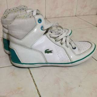 Lacoste High Cut /Green