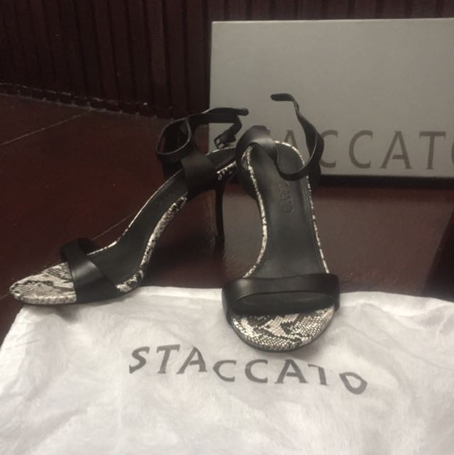 Staccato Size 37