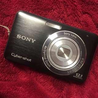 Sony 12.1MP Camera