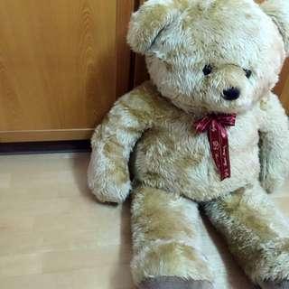 大隻熊熊娃娃 🐻