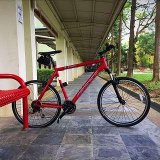 Felt F-lite 500 Road/Hybrid Bicycle