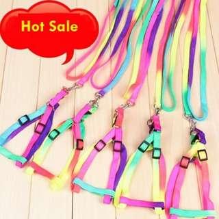 【寵物商品】七彩虹胸背帶+牽繩組