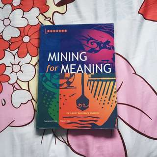 Mining for Meaning (Lower Sec)