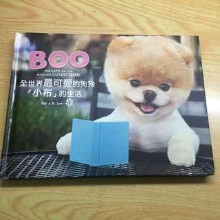 🚚 BOO全世界最可愛的狗狗「小布」的生活