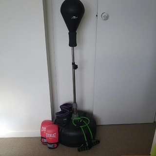Punch Bag + Gloves + Inner Gloves + Door Gym + Ankle Weights
