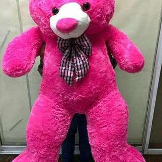 Teddy Bear🐻  💗💗💖💖 💲2⃣,0⃣0⃣0⃣ OnLy ‼️ Human Size ‼️