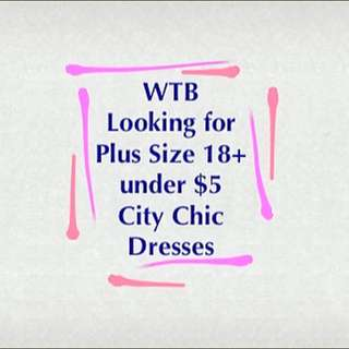 City Chic Dresses