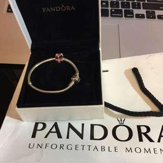 Pandora Bracelet + Charm