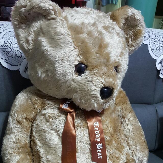 超大泰迪熊玩偶
